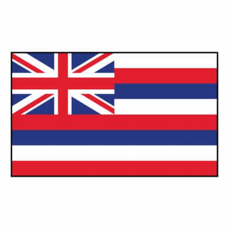 Hawaii State Flag - United States