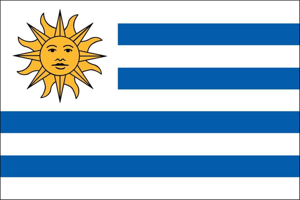 uruguay - photo #12